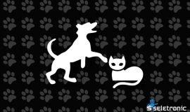 Imagem de Fatos e dicas sobre a comodidade de Pet Shops online!