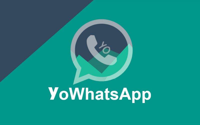 Imagem de O que é YoWhatsApp?