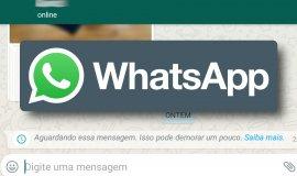 """Imagem de Whatsapp: O que é """"Aguardando essa mensagem. Isso pode demorar um pouco."""""""