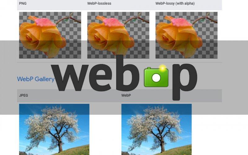 Imagem de O que é arquivo WebP?